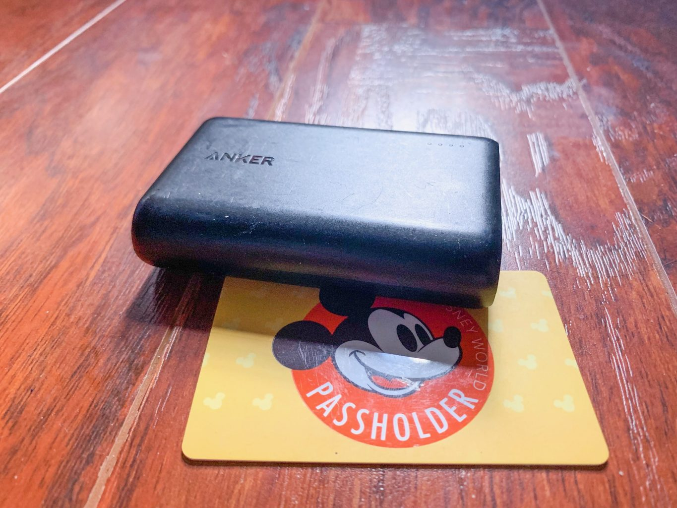 take a power core with you to Disney
