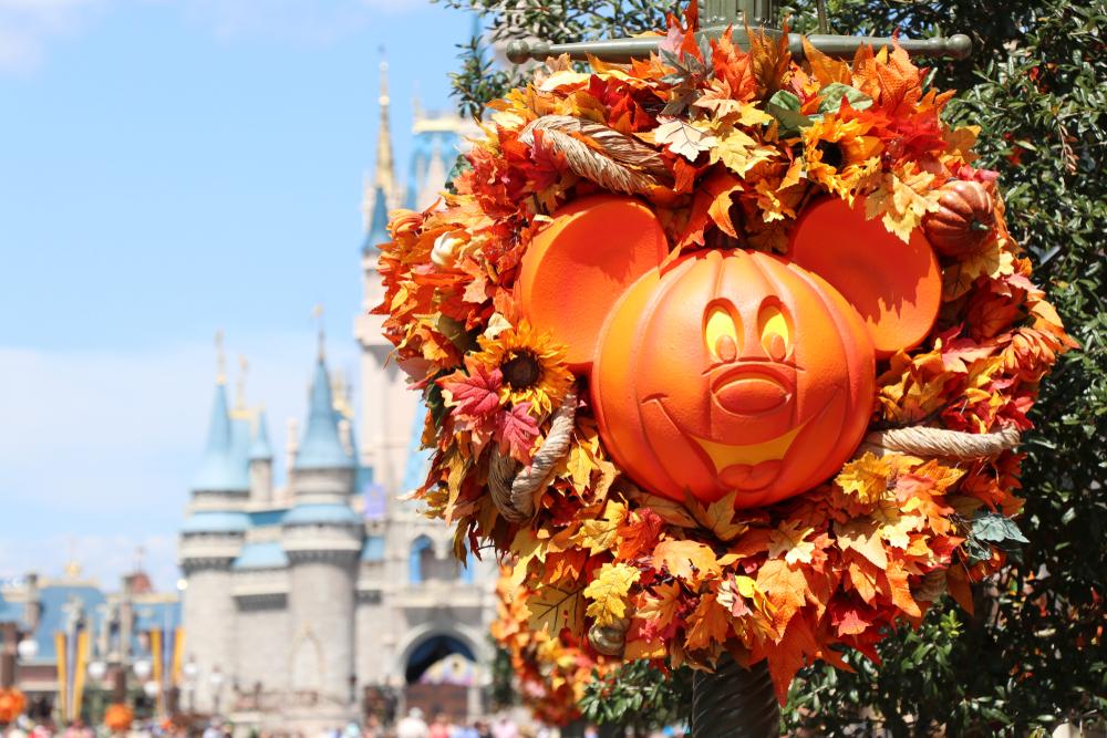 Disney Halloween Pumpkin on Main Street