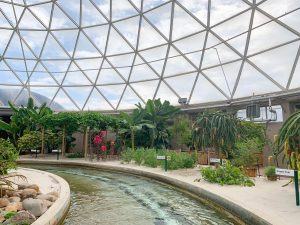 living with the land is an underrated ride at epcot, and it has a greenhouse