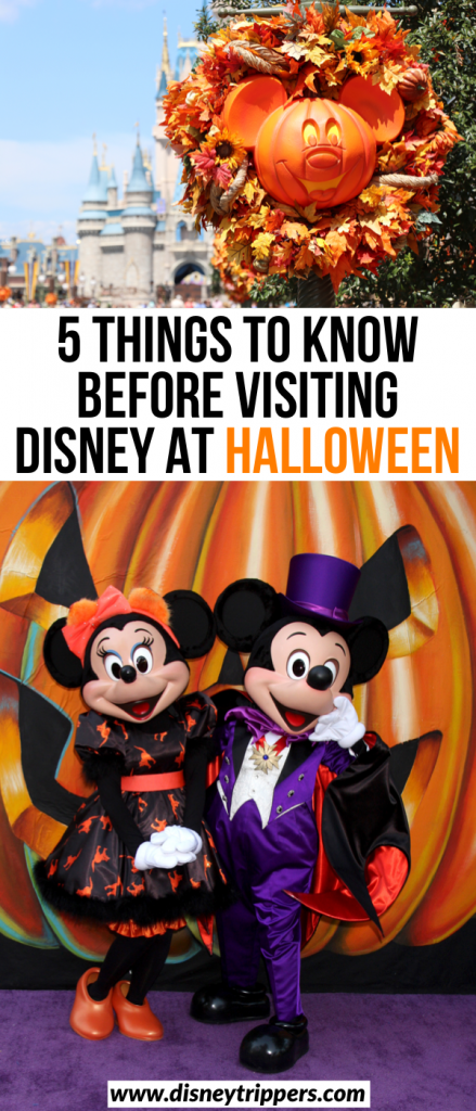 5 Things To Know Before Visiting Disney At Halloween | Insider Tips for Halloween At disney | Tips for Mickey's Not So Scary Halloween Party At Walt Disney World | How to visit Halloween At Disney World | best time to visit Disney for Halloween | Halloween travel tips for Disney | tips for planning a fall trip to Disney World #disney #halloween #disneyworld #disneycostume