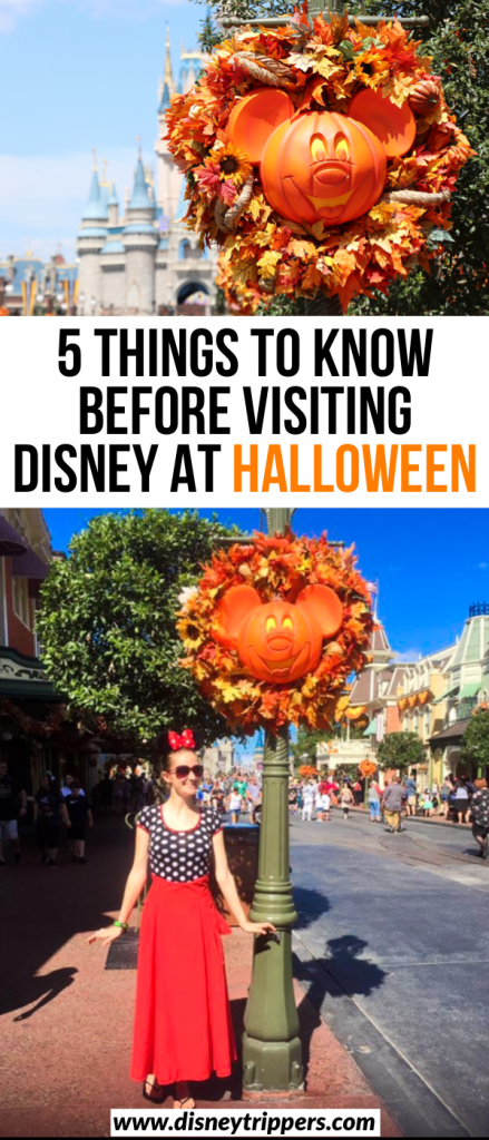 5 Things To Know Before Visiting Disney At Halloween | tips for Mickey's Not So Scary Halloween Party | visiting Disney at Halloween | Disney halloween Costume tips | Disney travel tips | tips for planning a trip to Disney at Halloween #halloween #disney