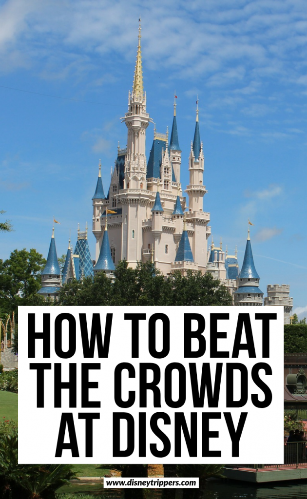 how to beat the crowds at disney (2)