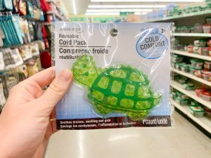 turtle shaped cold pack Dollar Tree Disney