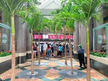 clean cafeteria-style ordering area lined with palm trees