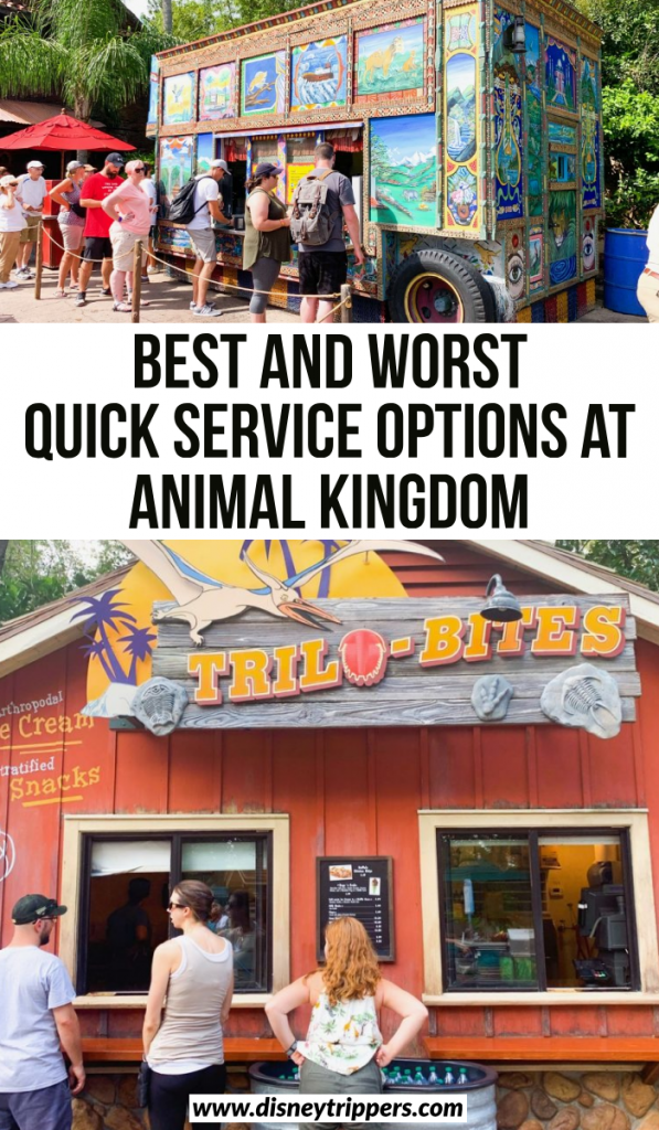 best and worst quick service options at animal kingdom