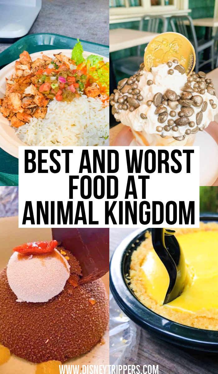 Best And Worst Food At Animal Kingdom | 18 Best (And Worst!) Animal Kingdom Restaurants | where to eat at Animal Kingdom | animal kingdom Disney World dining tips | tips for where to eat At Disney World | dining tips for Disney world's Animal Kingdom | best food at Disney #disney