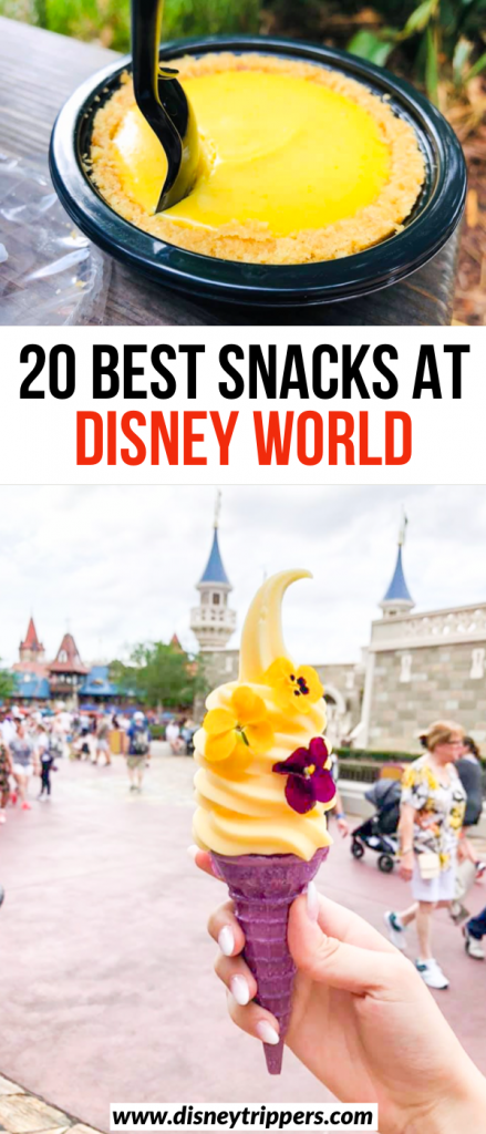 20 Best Disney Snacks To Eat In The Parks | best food to eat with your Disney dining snack credit | what food to eat at Disney | pretty Disney snacks for photos | best 2020 snacks at Disney world | what to eat at Disney world | Disney travel tips | best Disney food to try #disney #food #disneytips