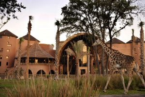 dirt-colored buildings with giraffe in front Disney World resort room requests
