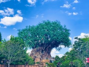 huge carved tree surrounded by greenery Disney secrets