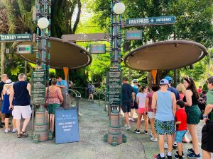 people standing in two lines Animal Kingdom rides