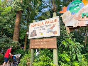 battered sign with gorilla and hippo marking trail Animal Kingdom rides