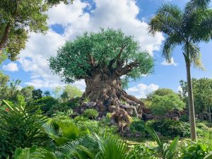 huge intricately carved tree surrounded by greenery Animal Kingdom rides