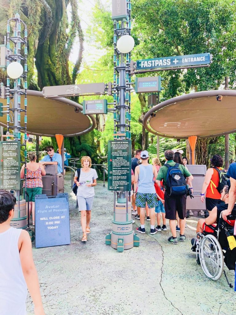 Entrance to Flights Of Passage Ride at Animal Kingdom