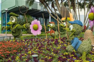Donald, Huey, Dewey, and Louie Topiaries at Epcot Flower and Garden Festival