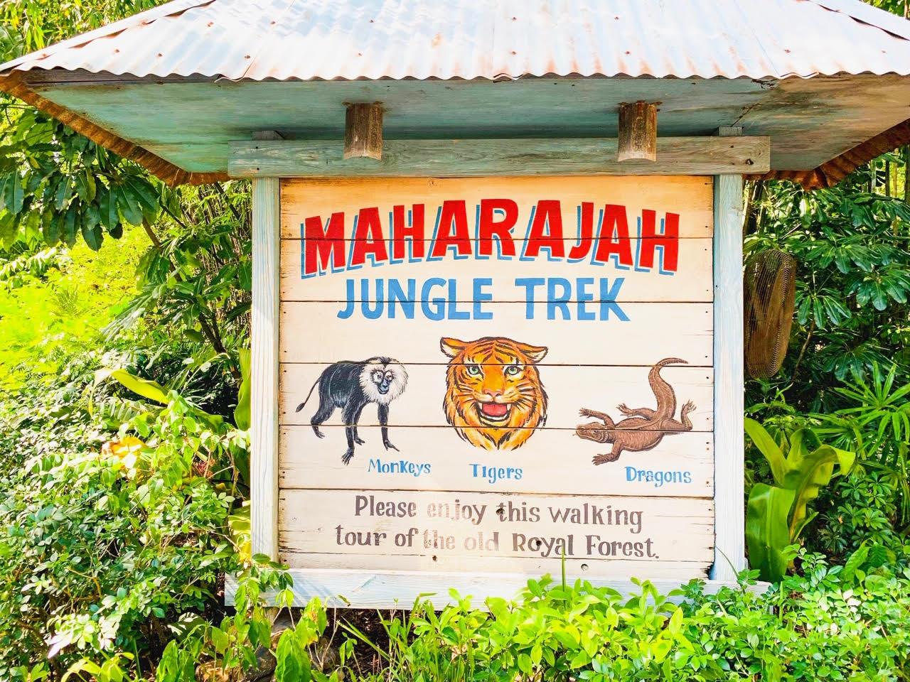 Animal Kingdom Maharajah Jungle Trek
