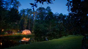 glowing tent alongside river in nature Disney World resorts