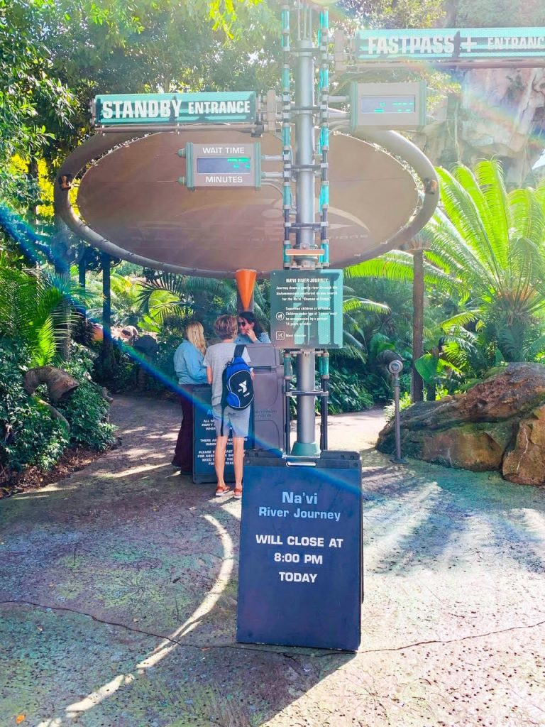 Photo of Na'vi River Journey, one of the best Disney World FastPass selections!