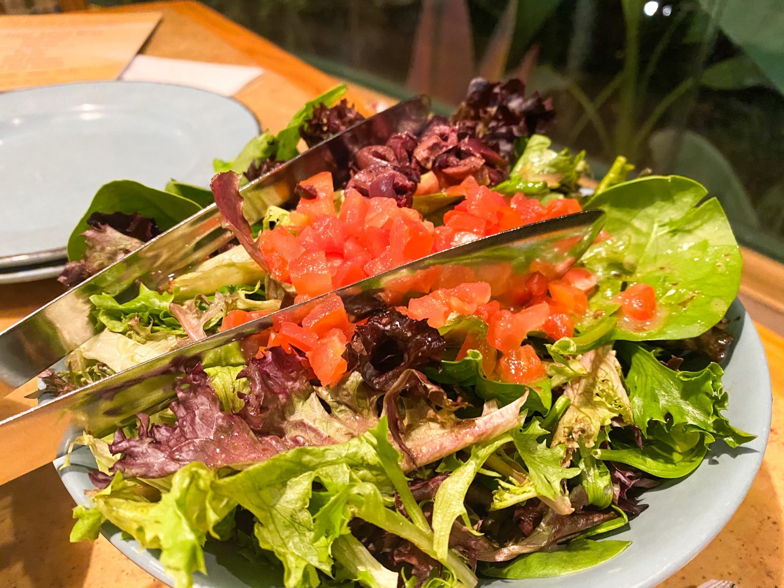 Harvest Salad at Living With The Land in Epcot