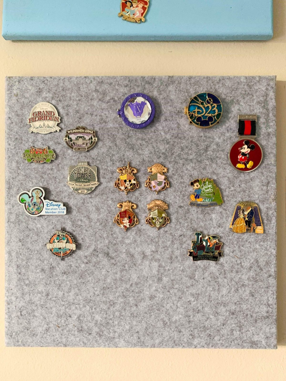 Passholder exclusive pin board