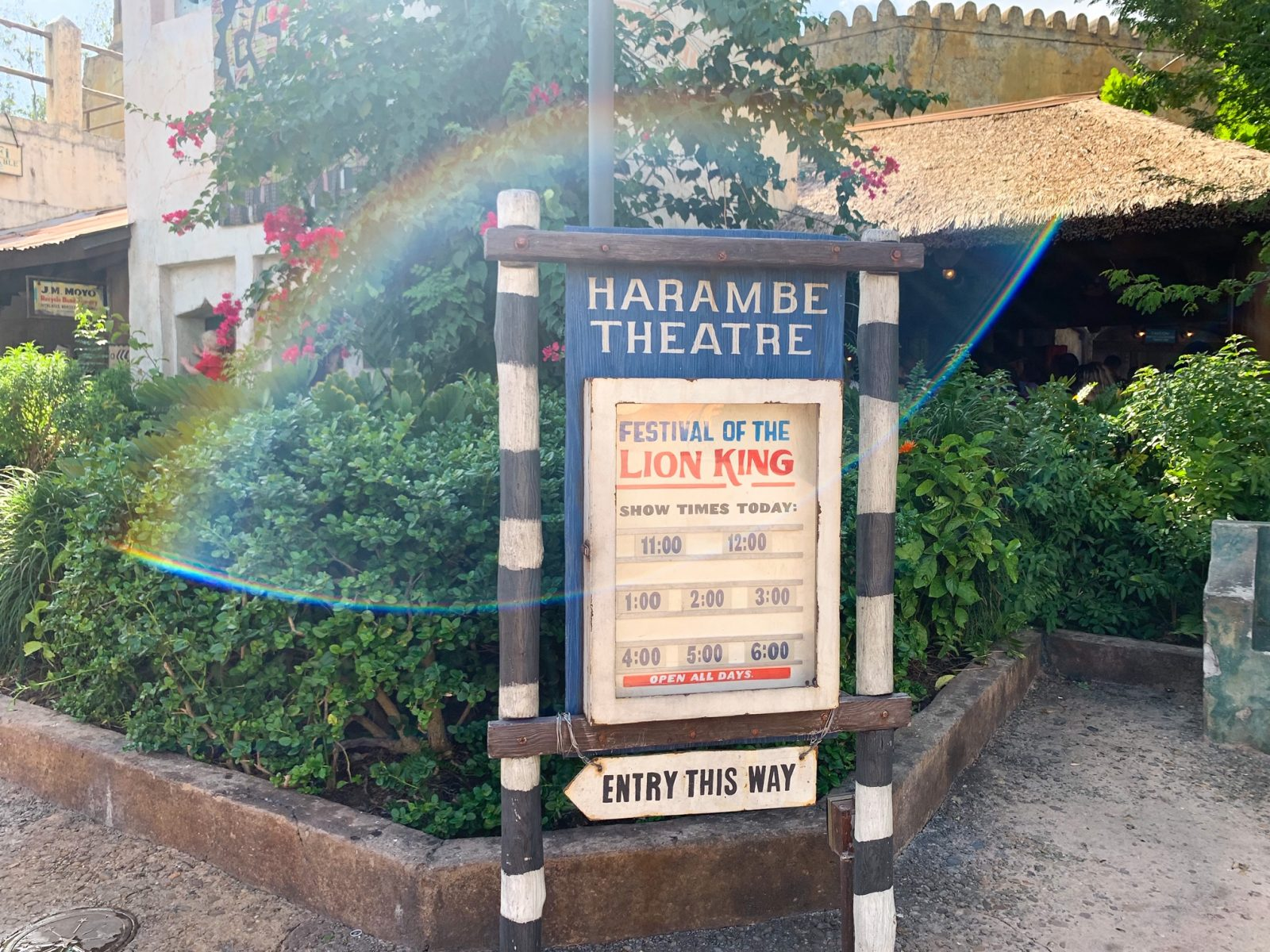 Disney World Shows the Lion King