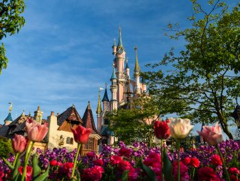 Disneyland Paris Castle with flowers